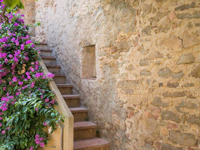 Ancient stairs wrapped with bougainvillea